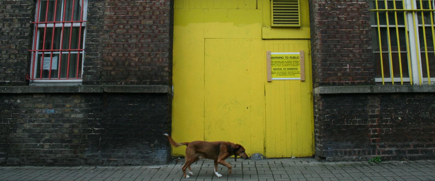 Dublin 2006